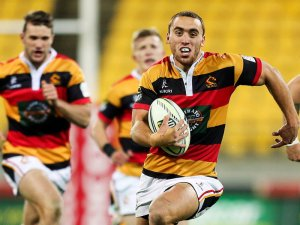 Joe-Webber-Waikato-2014_3203966